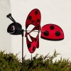 magic-ladybird