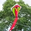 latawiec-cobra-red