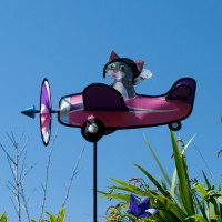 Airplane M GREY KITTY