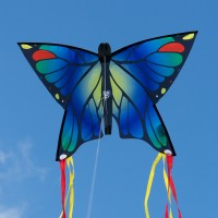 latawiec-butterfly-blue