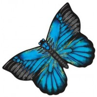latawiec-x-kites-butterfly-kites-blue-morpho